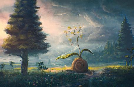 Фото Огромная улитка с цветком на панцире ползет на тропинке. С дождевой тучи идет дождь