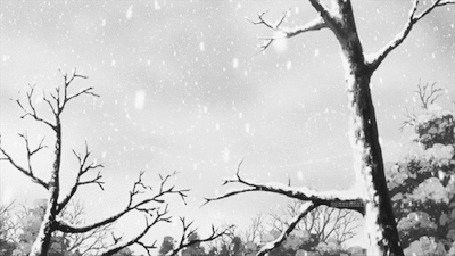 Фото Деревья под падающим снегом