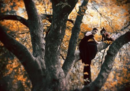 Фото Девушка с лисой сидит на дереве, фотограф Юлия Дорофеева