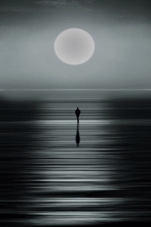 ���� �������, ������������ � ���� (� Solist), ���������: 21.10.2014 15:51