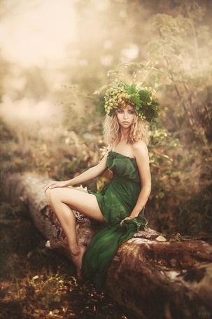 Фото Девушка в зеленом платье и с листьями на голове сидит на стволе дерева, фотограф Светлана Беляева