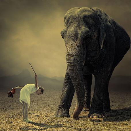 Фото Девочка со скрипкой кланяется слону в саванне, by Caras