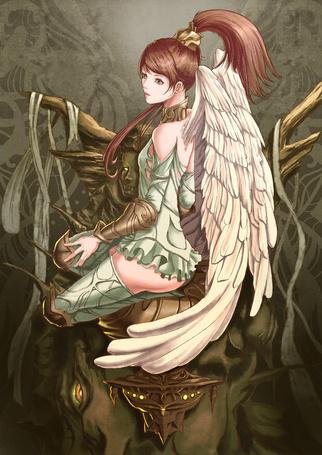 Фото Девушка с белыми крыльями сидит на голове животного