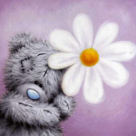 Мишка плюшевый с цветами фото