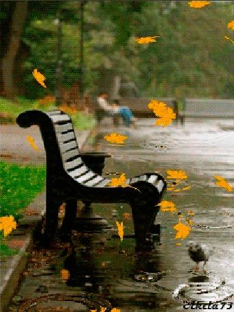 Фото Осень, идет дождь, в парке стоит мокрая скамья, капли дождя расходятся кругами в лужах по которым ходит голубь, опадая кружат желтые листья, автор работы Akela73