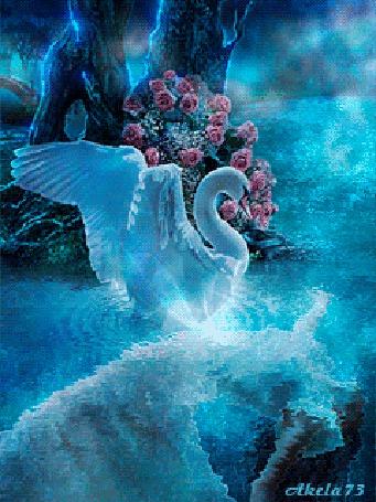 Фото Белый лебедь поднял крылья и горюет над утонувшей девушкой, лежащей на дне реки, рядом растет дерево у основания которого растет куст розовых роз, автор Akela 73