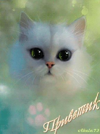 Фото Белый пушистый котенок моргает глазами, машет лапкой и говорит Приветик, на фоне молочного тумана, автор Akela 73