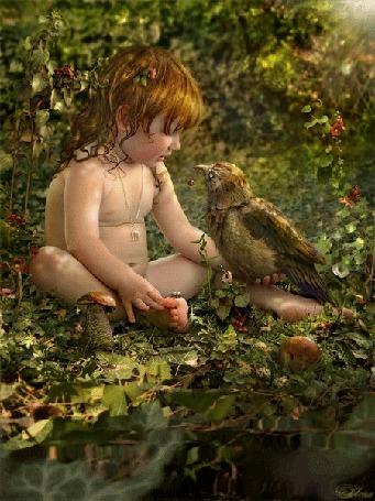 Фото Маленький ребенок сидит на поляне у воды на руке держит птицу, которая кивает головой, вокруг летают бабочки