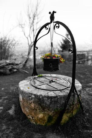 Фото Старый колодец с цветами в ведре