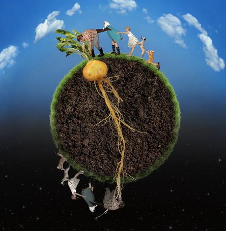 Фото Мужчина, женщина, девочка, собака, кошка и мышка и их антиподы тянут репку за листья и корешки с противоположных концов земного шара