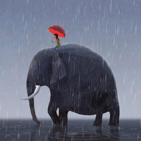 Фото Девушка с зонтом сидит на слоне под дождем