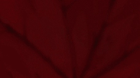 Фото Такума Онизаки / Takuma Onizaki и Тамаки Касуга / Tamaki Kasuga из аниме Багровые осколки / Hiiro no Kakera