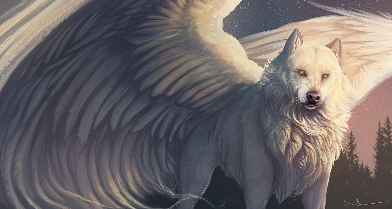 Фото Белый волк с крыльями