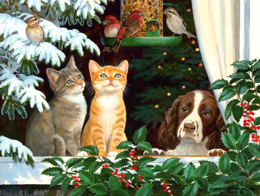 Открытки коты и собаки
