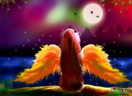 Фото Девочка Ангел с желтыми крыльями за спиной сидит на берегу и смотрит на ночную реку с розовым небом над ней и полной Луной, по небу летают птицы и кружатся вокруг светлячки