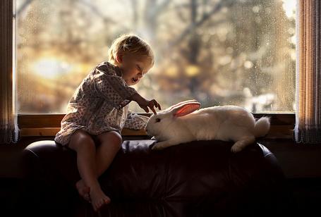 Фото Ребенок сидя на спинке кожаного дивана у окна с покрытыми каплями от дождя стеклами, играет с белым кроликом, который лежит рядом