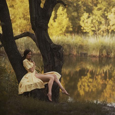 голая тетя сидит на дереве-шн3