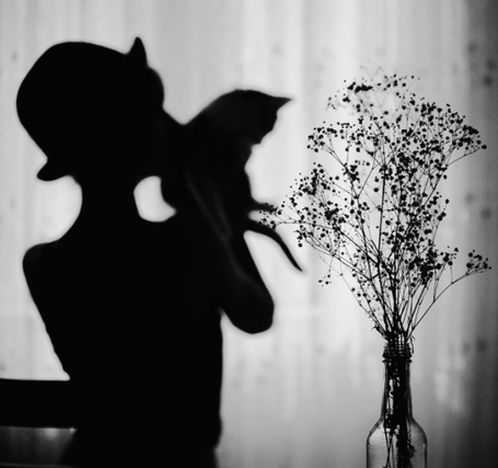 Фото В стеклянной бутылке стоят сухие цветы, вдали силуэт человека с кошкой на плече, by esmahanozkan