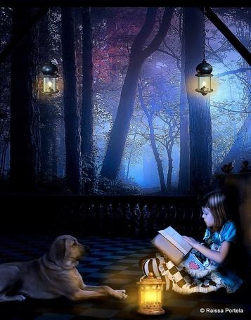 Фото Девочка, читающая книгу рядок с горящим фонарем, лежащей напротив нее собакой в окружении лесной чащобы с синим туманом между деревьями, горящими фонарями, висящими на ветках деревьев, автор Raissa Portela