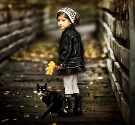 Фото Девочка и кот на мосту с осенними листьями
