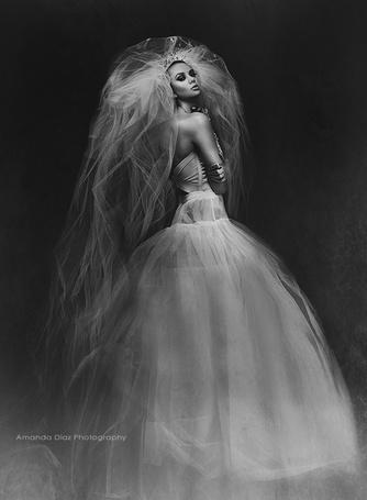 Фото Невеста в пышной фате