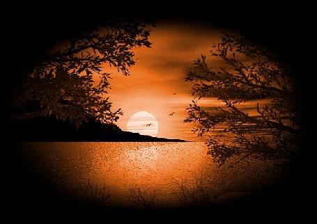Фото Над заливом за горой всходит полная Луна, в небе летают птицы