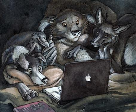 Фото Собака, лис, енот и ворон лежат на постели у работающего ноутбука и смотрят на экран