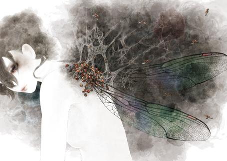 Фото Девушка с крыльями насекомого, в которых паутина, кишащая божьими коровками