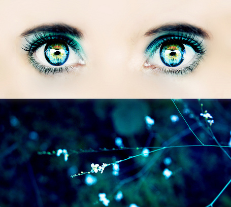 Фото Работа Turquoise feeling / бирюзовое чувство, глаза девушки и ветка с маленькими цветами, by Gingershots
