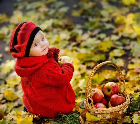 Фото Малышка в красной шапочке и кофточке сидит на земле в осеннем парке, а рядом с ней стоит корзинка с яблоками