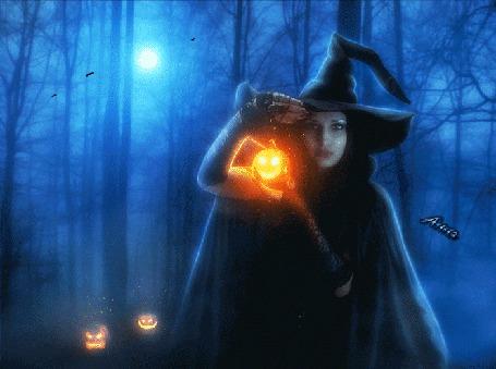 Фото Девушка- ведьма, в ночном лесу с фонариками в виде тыковок, кружат черные птицы, туманно, автор Анна