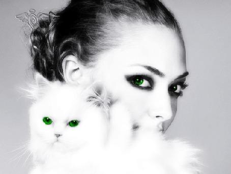 Фото Девушка с белой кошкой, моргают глазами