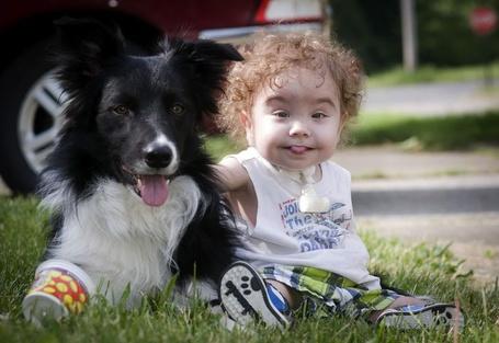 Фото Малыш с собакой сидят на лужайке