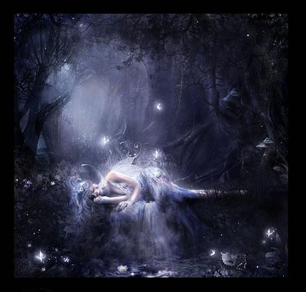 Лежит у воды в лесу автор lilla marton