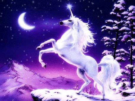 Фото Единорог вставший на дыбы на отвесной скале, на небе луна, звезды, идет снег