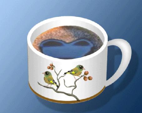 Фото Птички клюют ягоды на ветке, нарисованной на чашке с кофе