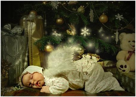 Фото Спящий ангел среди игрушек