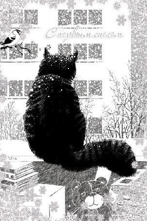 Фото Кот сидит у окна и наблюдает за падающим снегом (С первым снегом)
