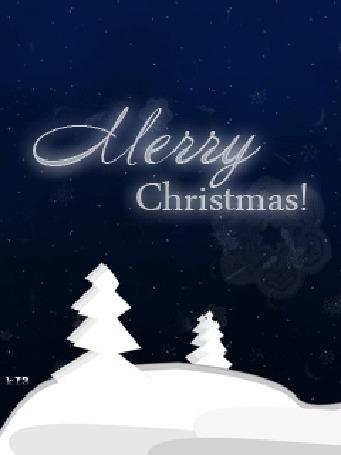 Фото Елки, покрытые снегом (Merry Christmas!/Счастливого Рождества!)