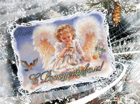 Фото Ангелок, с птичками и цветами, в зимней рамке - снежинки, шишки на елке (С Рождеством)