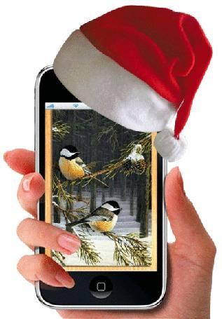Фото Женская рука держит смартфон, на экране которого меняются картинки зимнего пейзажа со всевозможными разноцветными птичками, на смартфоне одета шапочка Санта Клауса