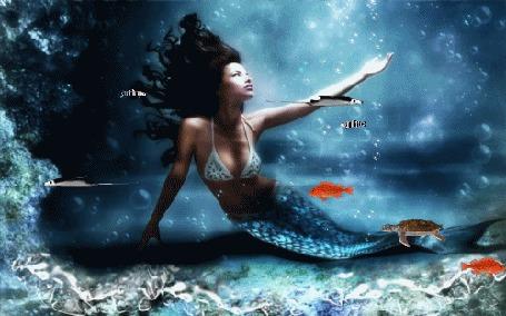 Фото Русалка под водой, в окружении рыбок и черепашки