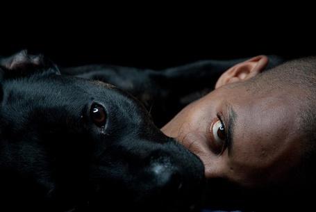 Фото Верные друзья, мужчина и собака лежат голова к голове