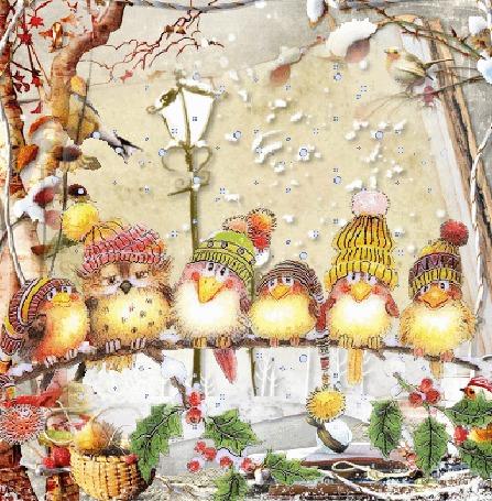 Фото Птицы в шапочках сидят в рядочек на веточке дерева
