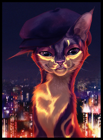 Фото Стильная кошка в панаме на фоне ночного мегаполиса, by Tamber Ella