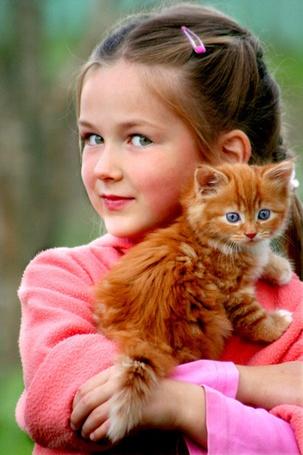 Фото Девочка держит на руках рыжего котенка