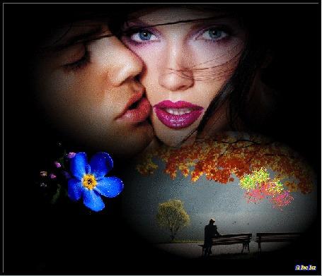 Фото На черном фоне влюбленные мужчина и женщина, голубой цветок незабудка, мужчина сидит на скамейке под деревом с желтой листвой и наблюдает за салютом, by Akela