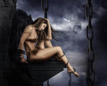 Фото Девушка с черными крыльями сидит на краю высокого здания, летят чайки