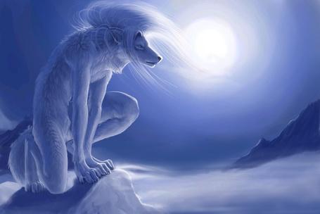 Фото На скале, на фоне неба с Солнцем, сидит присев на колено фантастический белый волк