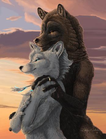 Фото Черный волк обнял и держит лапой лапу белой волчице, они смотрят на водную гладь моря, Robbyi Nickolson 10